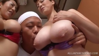 Great Far eastern pornstars with the use of large tits get slammed within the ffm threesome performance