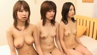 Japanese people youngster seductresses get bodies licked