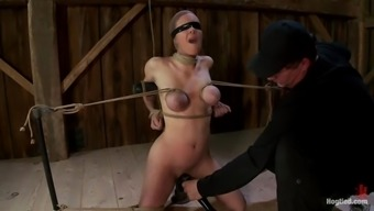 Three naughty sex slaves are certain to one another in bondage