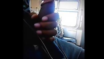Sparkle in public bus he want it