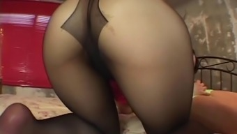 fuck secretary's ripped pantyhose nylon material