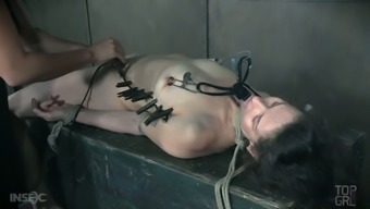 Paintoy Emma is ready for some incredible BDSM and femdom session