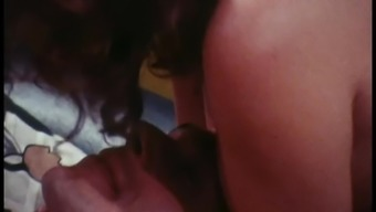 Brain Or Tails (1973) 2of3