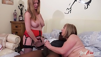 Hardcore action with blowjob provided by super horny mature ladies