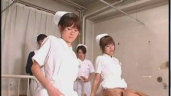 Japanese people Scholar Dentists Courses and Perform