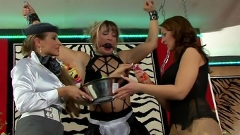 Femdom lesbian threesome along with chained brown